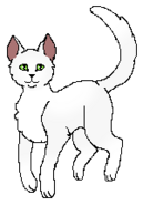 Mothflight StarClan