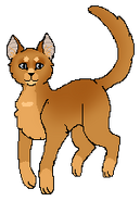 FoxheartSC