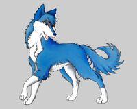 Blue wolf by black butler2010-d46282m