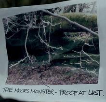 Beast of the moors