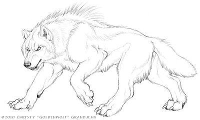 Beast wolf
