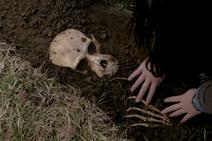 William Smith's skeleton