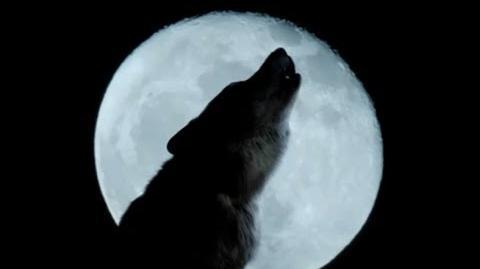 Wolfblood Series 1 Trailer (HD)