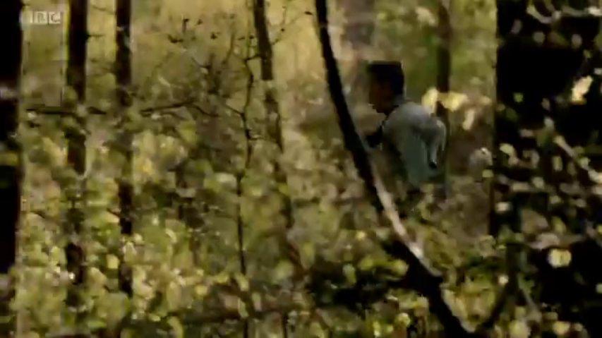 Wolfblood Series 2 Episode 12 Going Underground