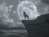 Wolfbloods