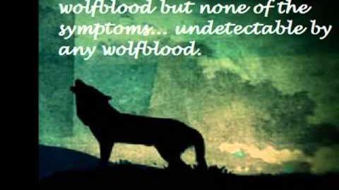 Wolfblood Series 3 Idea