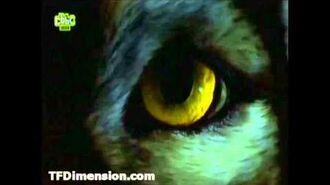 Wolfblood Transformation