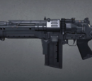Sturmgewehr