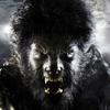 Wolfman-portal