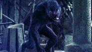 Werewolf- The Beast Among Us Daniel Werewolf