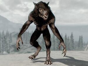 SR-creature-Werewolf 03