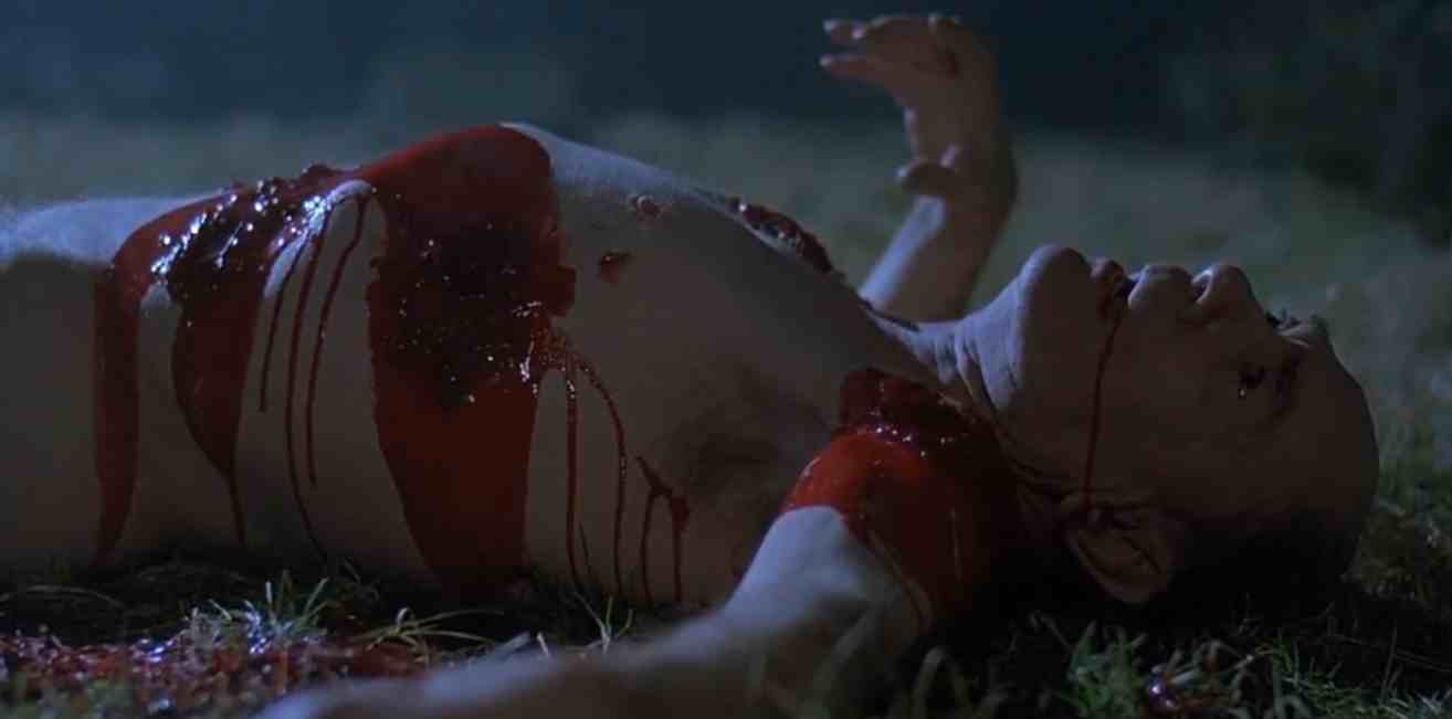 Image result for an american werewolf in london