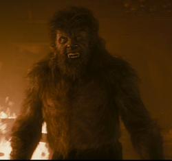 Wolfman John