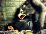 The Werewolf (Ginger Snaps 2)