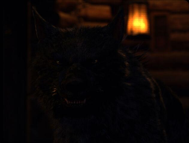 File:2Werewolf.jpg