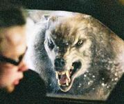Werewolfwindow