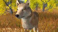 WolfQuest original 2007 trailer