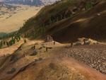 Fossil Forest WQscreenshot-1 (update)
