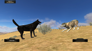 WolfQuest Screenshot wq (2.5)