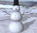 2.7.3 seasonal sc snowman