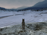 Time dawn winter SC (2.7)