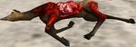 Elkcarcass 6 (2.7)