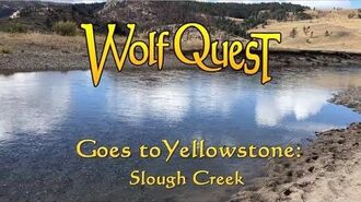 WolfQuest Goes to Yellowstone Slough Creek