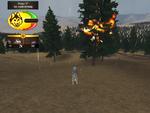 Treefire