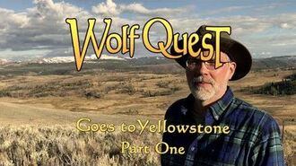 WolfQuest Goes to Yellowstone (Part One)