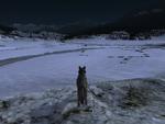 Time night winter SC (2.7)