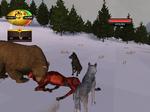 Watching the Bear Eat
