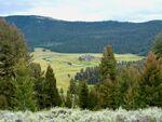Yellowstone Slough Creek