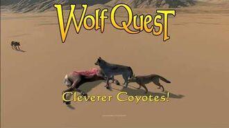 Cleverer Coyotes