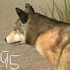 Uotm2011 avatar entry 6