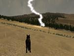 Wolfquest 2 5 lightning by sassywolfchick-d3jbyl0