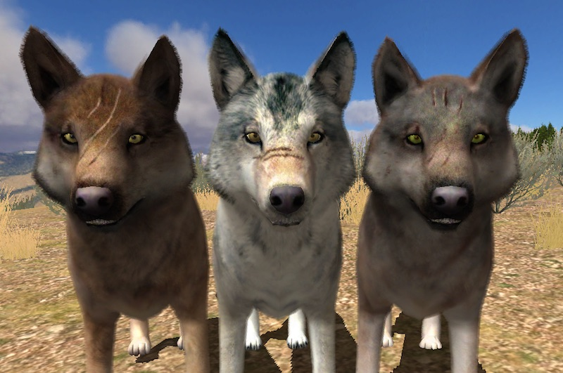 Wolfquest android wolfquest wiki fandom powered by wikia threescars ccuart Choice Image