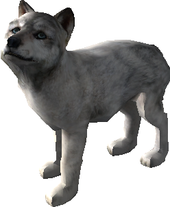 File:Pure-white-puppy2 WQ.png