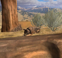 Frodo1 screenshot4 cropped