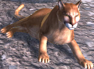 Cougar wolfquest wiki fandom powered by wikia relaxing ccuart Choice Image