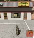Sue's Survival Gear