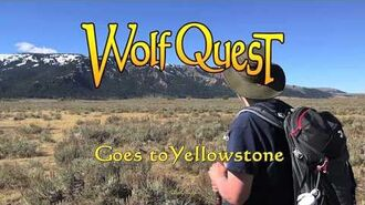 WolfQuest Goes to Yellowstone Amethyst Mountain