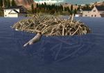 LR beaver lodge