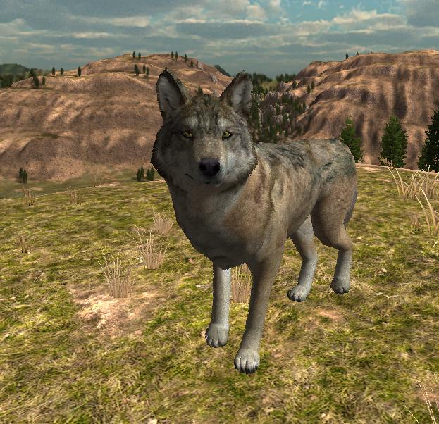 Player wolfquest wiki fandom powered by wikia ccuart Choice Image