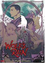 DVD2 Bandai