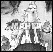Волчий Дождь (манга)