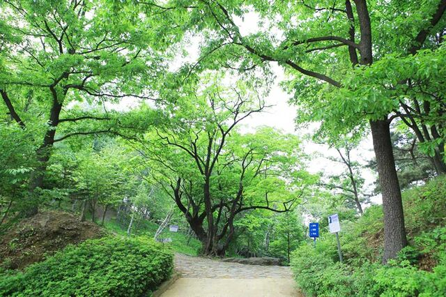 File:Wolmyeongdong-culture-center-trail-4.jpg