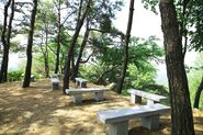 Wolmyeongdong-hiking-trail-benches