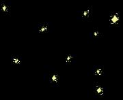Звёздная волчица