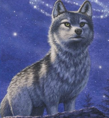 Frost Wolf Faolan