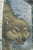 File:Wolves of beyond.png